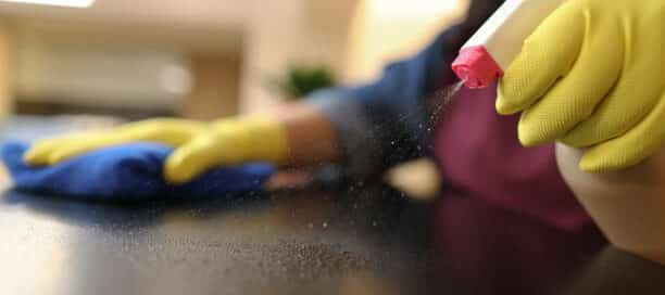 Bayside Cleaning Services